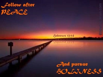 Hebrews 12:14 Follow After Peace (orange)